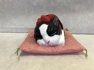 眠り猫・大 ハチワレ